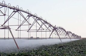 Pivot irrigation system watering a field of cotton in Mississippi.
