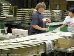Plates being inspected and bar-coded