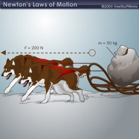 Notice that doubling the force by adding another dog doubles the acceleration. Oppositely, doubling the mass to 100 kg would halve the acceleration to 2 m/s2.