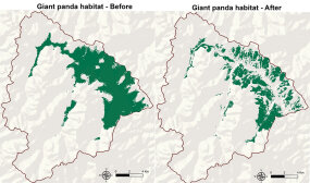 panda habitat change map