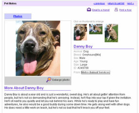 Danny Boy's page
