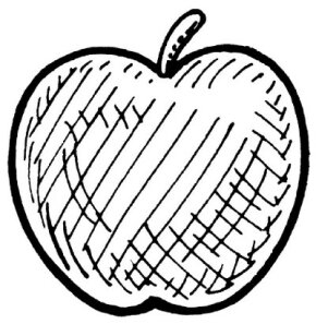 A hatch and crosshatch illustration of an apple.