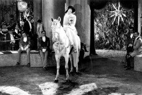 Elephants are great and all, but horses have been holding the circus down for much longer.