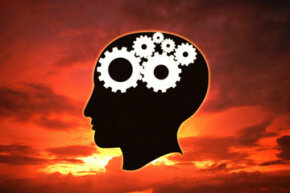 Weuse all the gears thatchurn inside our heads -- not just 10 percent of them.