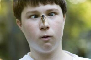 A cicada gets up close and personal with this teenage boy. Fortunately, it's harmless.