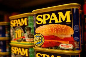 Spam, Spam, Spam, Spam ... Spam, lovely Spam, wonderful Spam.