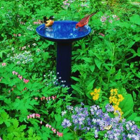 To add the element of water to a small garden, try a bird bath.