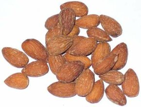 Scientists discovered a collection of nuts estimated to be 17 million years old.