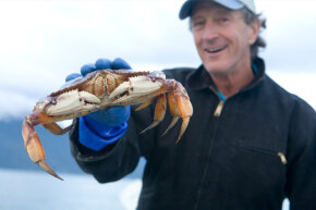 A fisherman smiles and holds a wild Alaskan Dungeness crab (Cancer Magister) in hand in Haines, Alaska.