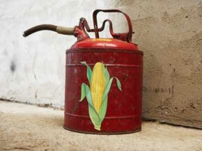 While turning corn into gasoline may sound like a feat worthy of King Midas, not everyone thinks the ethanol industry has the golden touch.