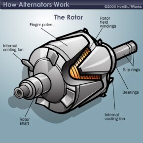 This is what you might see if you were to open your alternator.