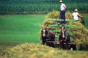 The Amish maintain an 18th century lifestyle in the modern world.