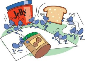 Complete the ants at a picnic activity to watch ants steal your lunch.