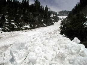 Most victims are buried in the debris in the avalanche runout.