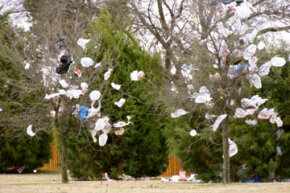 The 500 billion plastic bags produced annually fill up landfills and gather in trees.