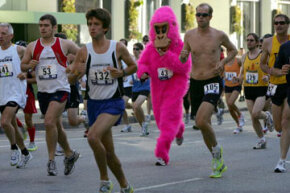 Don't be surprised if you see a pink gorilla trying to outpace the serious competitors at Bay to Breakers.