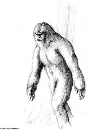Artist's rendition of what a bigfoot might look like, based on descriptions from eyewitnesses