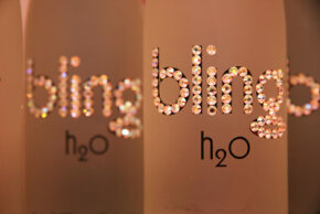 Bling H20 -- the new (expensive) bottled water. But too many of these could lead to trouble. See world food records pictures.