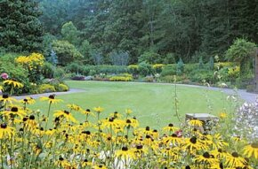 The gardens at Johns Hopkins Hospital help patients relax during their recovery.