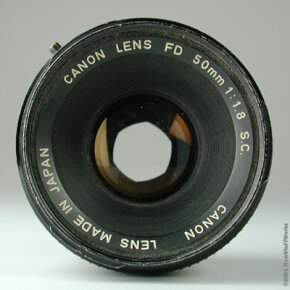 A standard 50 mm lens doesn't significantly shrink or magnify the image.