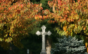 All Saints' Day was established in order to honor all of the saints at one time. It is celebrated on November 1.