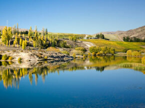 The Central Otago wine region is relatively new to New Zealand's winemaking industry. See our collection of wine pictures. 