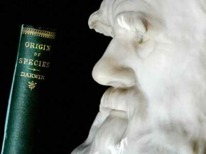 "A bust of Charles Darwin immortalizes his features, just as his book ""On the Origin of Species"" immortalizes Darwin's name."