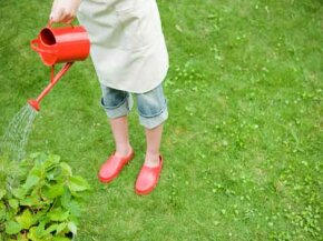 Tend to your lawn and garden regularly in order to preserve the initial time and money you invested.