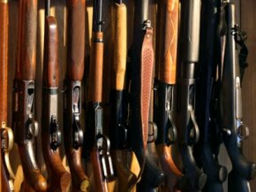 This gun case contains a variety of rifles and shotguns -- how do you know which one is right for you?