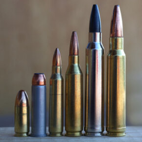The kind of ammunition you choose will help determine what kind of rifle you should buy.