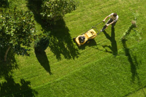If your yard is on the small side, a push-behind mower might be just the thing.