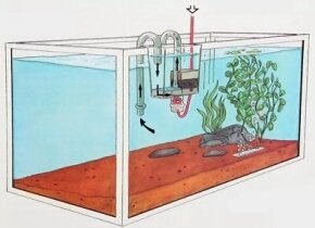 In many ways, filtration is the most complicated aspect of fishkeeping.