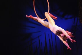 Acrobatics are a linchpin of the circus arts.