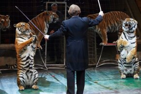 The thrill and inherent danger of performing with wild animals has kept big cat acts around for decades.