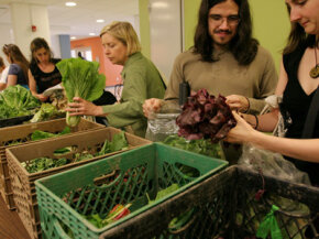 People pick up their weekly share of vegetables from a CSA. See more pictures of vegetables.