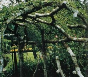 This rustic arbor easily supports a tangle of vines, providing shade as well as glimpses of a landscape.
