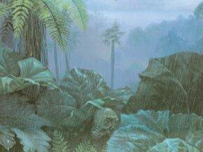 The dome-headed dinosaur Pachycephalosaurus. See more dinosaur images.