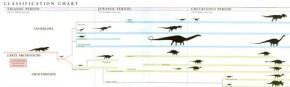 Classification Chart of Dinosaurs