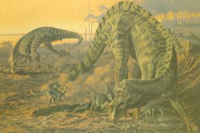A mother Maiasaura tends her young. See more dinosaur images.