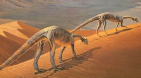 Massospondylus, prosauropods that lived during the Early Jurassic