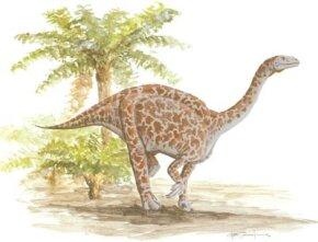 Lufengosaurus huenei