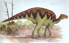 Bactosaurus johnsoni. See more dinosaur images.