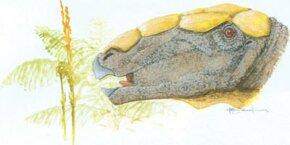 Denversaurus schlessmani See more dinosaur images.
