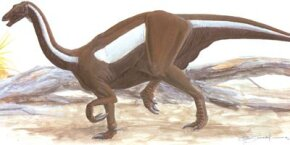 Erlikosaurus andrewsi See more dinosaur images.