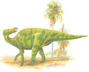 Shantungosaurus giganteus See more dinosaur images.