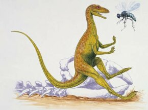 Which was more successful: the startled dinosaur or the apparently menacing bee?