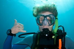 Dive watches help scuba divers calculate when they should return to the surface and help them to monitor how quickly they ascend.