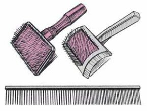 Long-haired dogs need bristle or wire brushes for their coats.