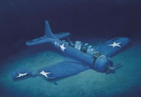 The Douglas SBD Dauntless was a carrier-based dive bomber, a compact scrapper with a gift for sinking Japanese carriers and other large ships. Here, a Dauntless is depicted undersea, at final rest. See more flight pictures.