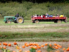 You can calculate the drawbar pull of any vehicle that pulls, including trucks, trains or even tractors. This tractor-powered hayride is a good example of drawbar pull, too.